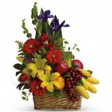 The World Flower Fruit Basket-56